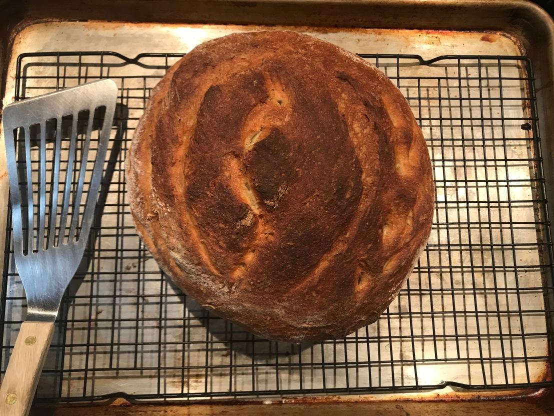 Adventures in Baking No. 48: Rustic Rosemary-Basil SpeltBread!