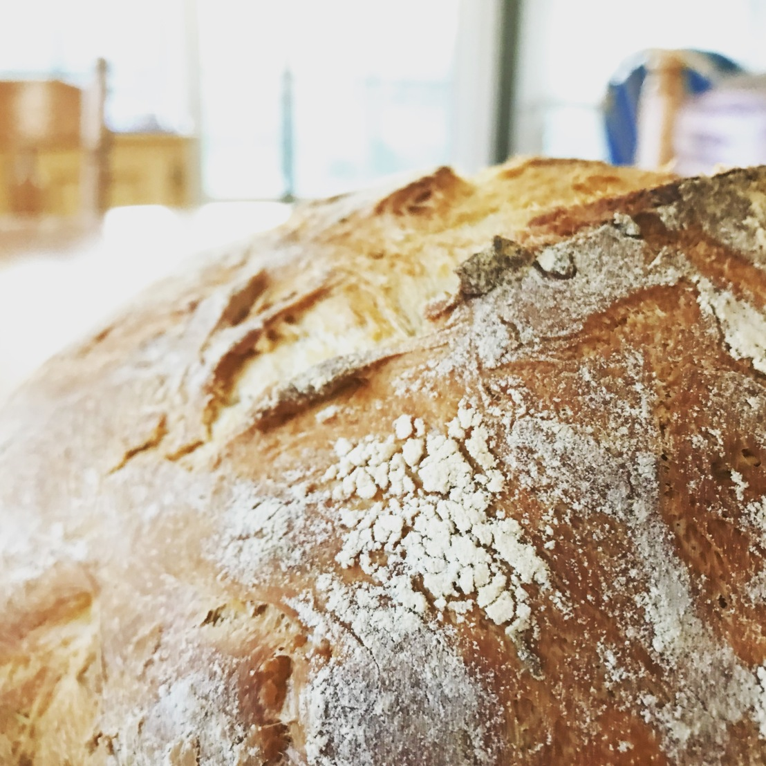 Adventures in Baking No. 56: Rosemary-Olive OilBoule
